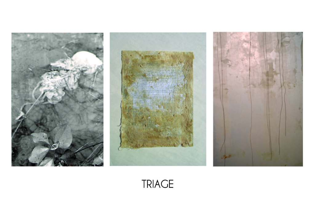 Triage: three artists sort shifting emergencies of bodies, language, and spaces between, revealing places of opacity, refuge, and intimacy. Triage Christine Toth with Karin Bolender & Craig Goodworth Exhibition Dates: September 5 - 28, 2013
